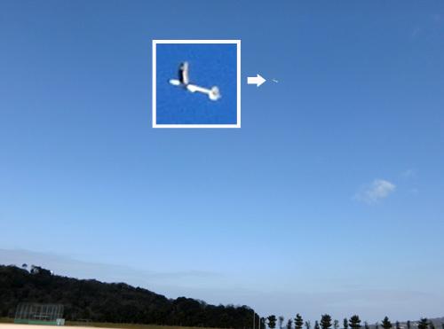 kh-1605ヒノキ胴のSAL、その2!