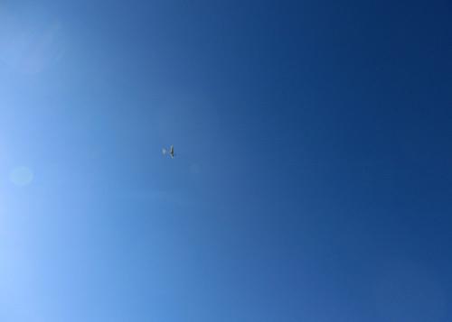 kh-16オールペーパーのオバハン、この後胴体ポッキン。