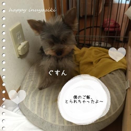 mini16IMG_0659-20161117.jpg