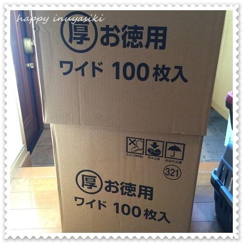 mini16IMG_4279-20161221.jpg