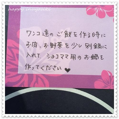 mini16IMG_4287-20161221.jpg