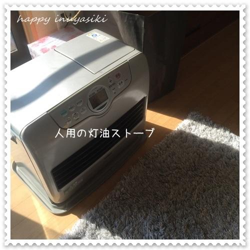 mini16IMG_6514-20170123.jpg