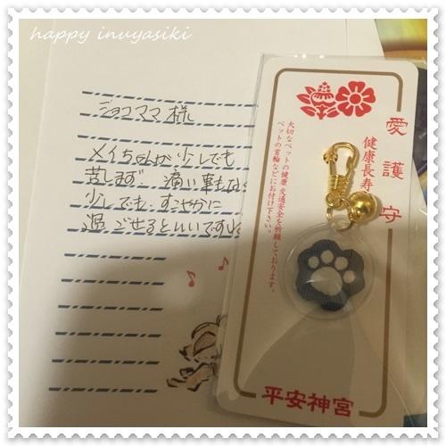 mini16IMG_6689-20170124.jpg