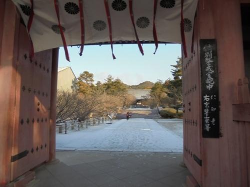 1gatuomuro12.jpg