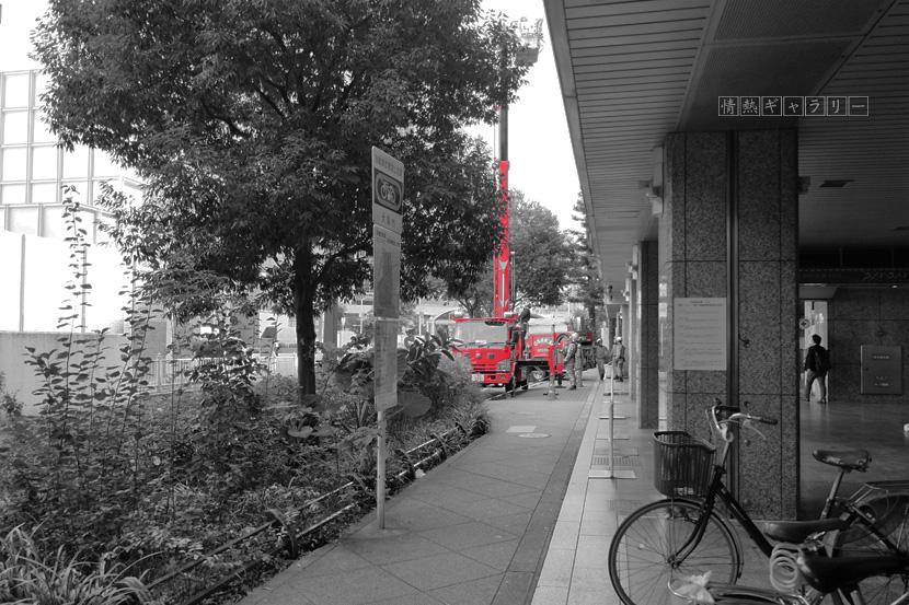 161028_red1.jpg
