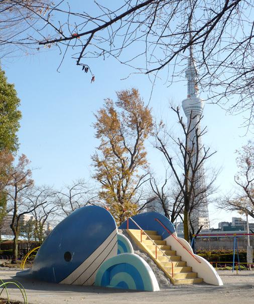 東京都墨田区立隅田公園