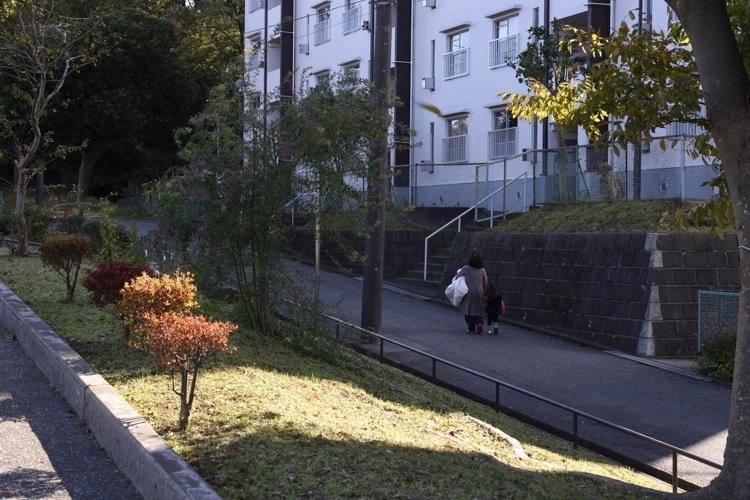 17_653_道3