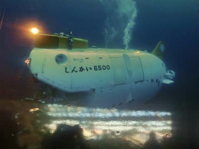 深海の魚たち
