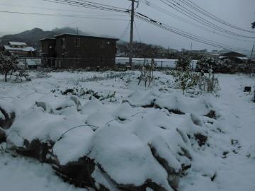 雪がボッコリ3