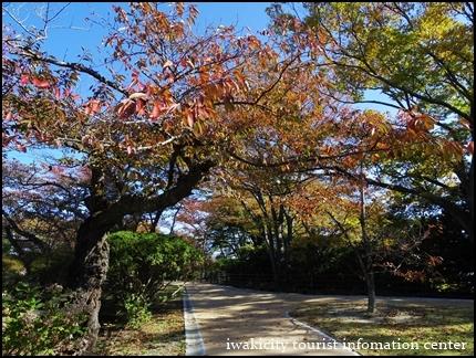 松ヶ岡公園 (10)