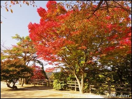 松ヶ岡公園 (6)