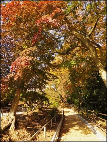 松ヶ岡公園 (14)