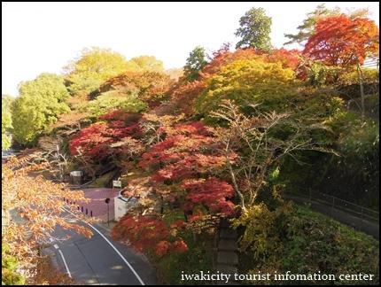 松ヶ岡公園 (16)