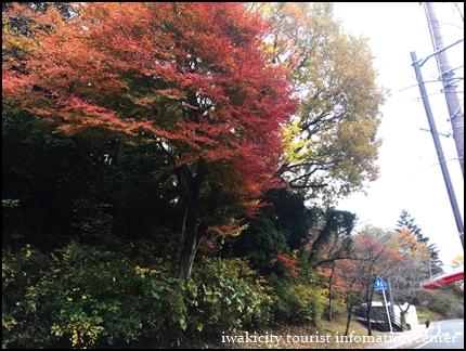 松ヶ岡公園 (1)