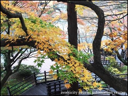 松ヶ岡公園 (4)
