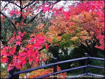 松ヶ岡公園 (9)
