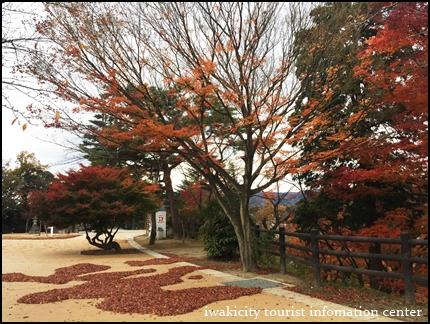 松ヶ岡公園 (7)