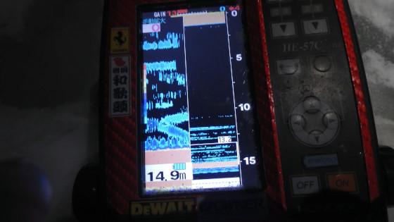 P1260027.jpg