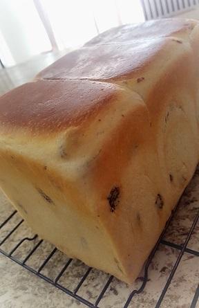 ホームレーズン食パン