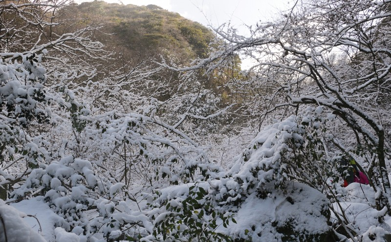 s-難所ヶ滝17.1.24 010