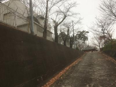 薬王寺西側の道