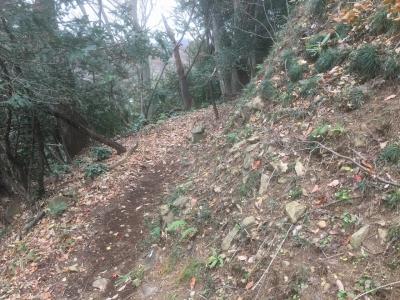 櫓台北辺りの犬走状の遺構