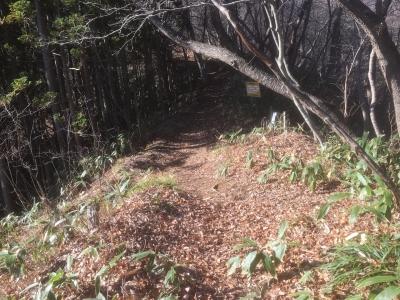 詰の郭の主要部方向への道