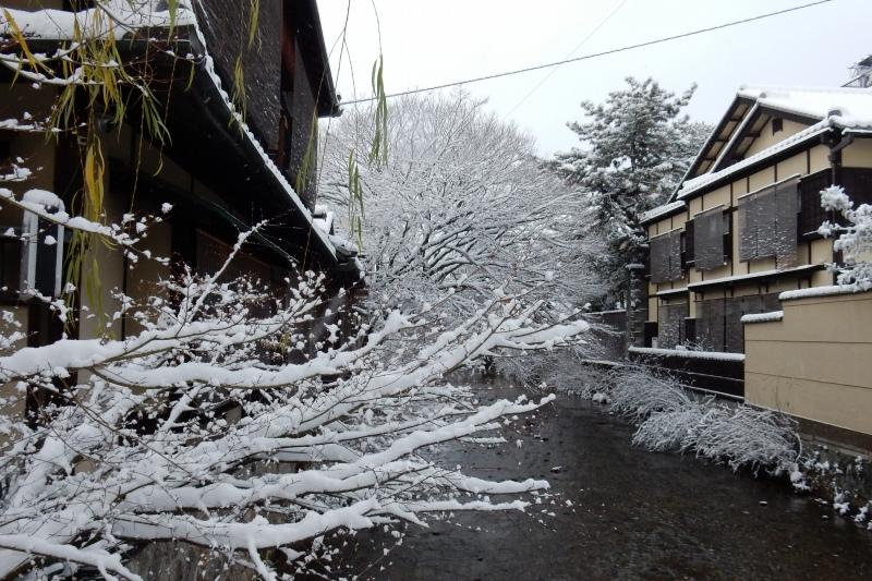 雪京都 145