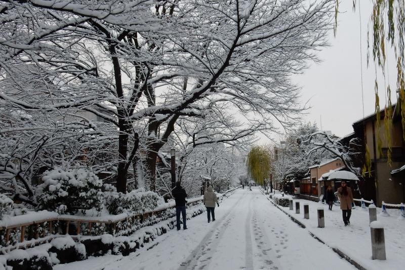 雪京都 137