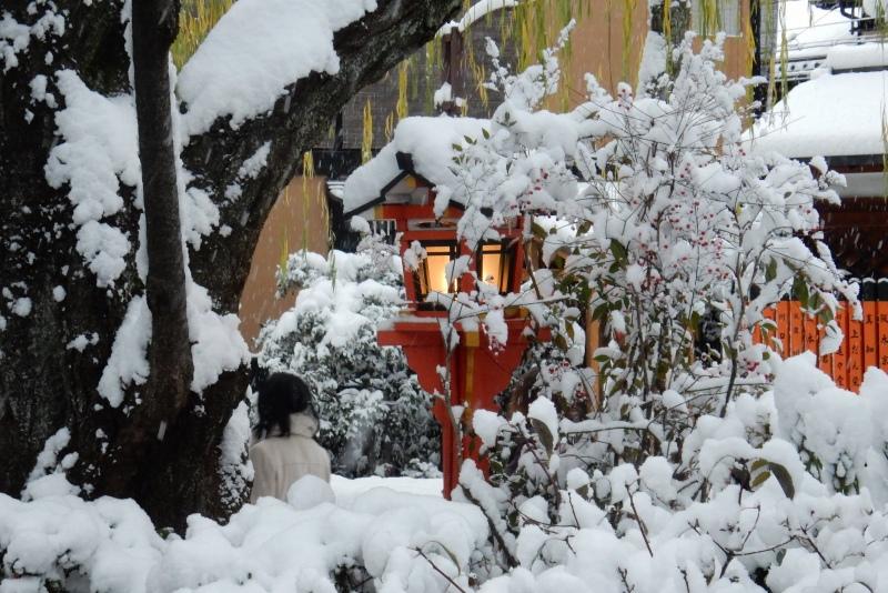 雪京都 155