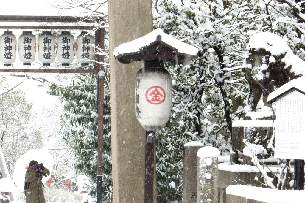 雪京都 218
