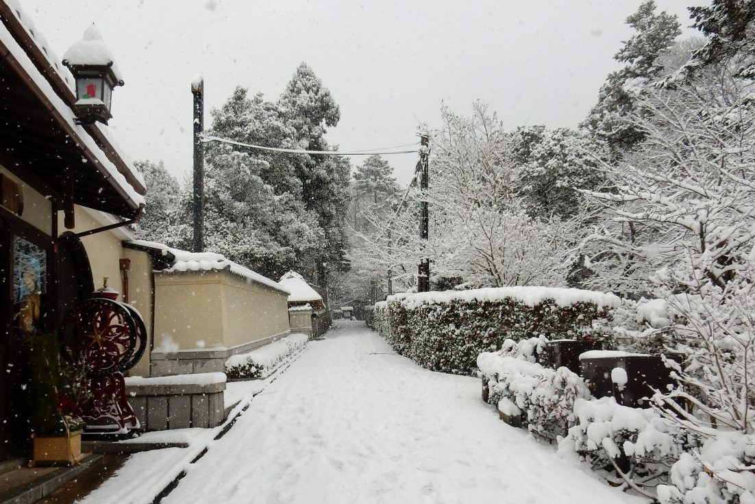 雪京都 246