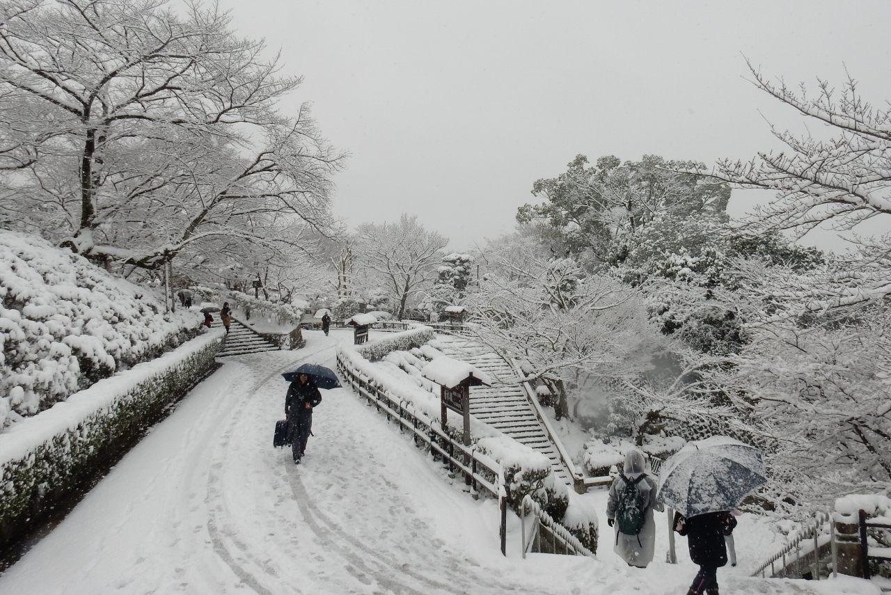 雪京都 269