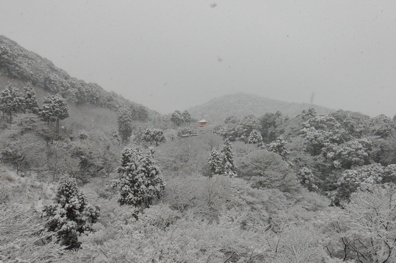 雪京都 280