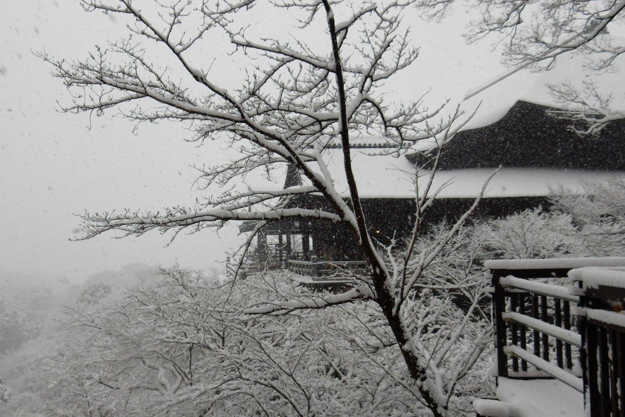 雪京都 313
