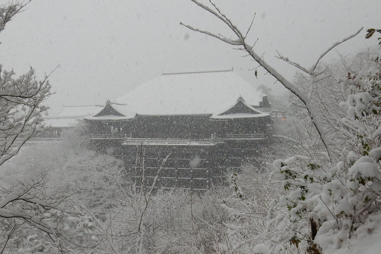 雪京都 318