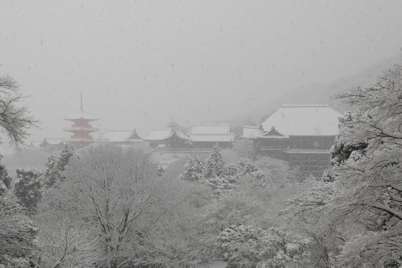 雪京都 324