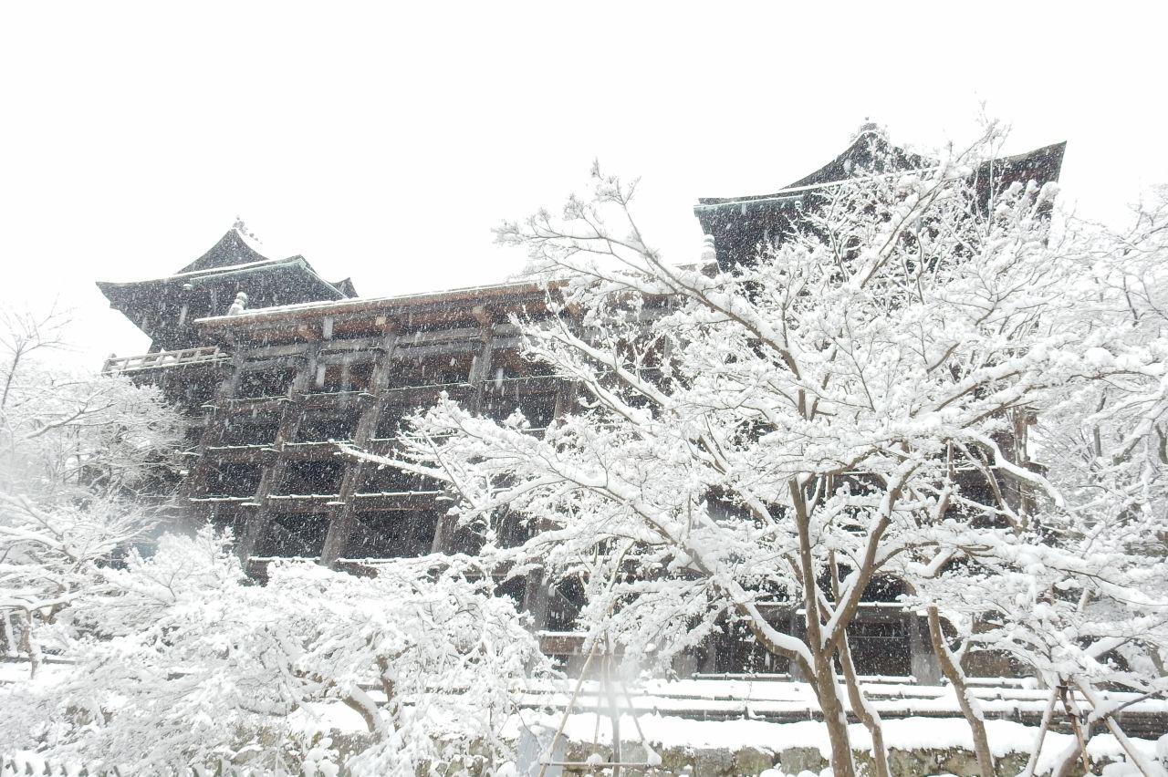 雪京都 333