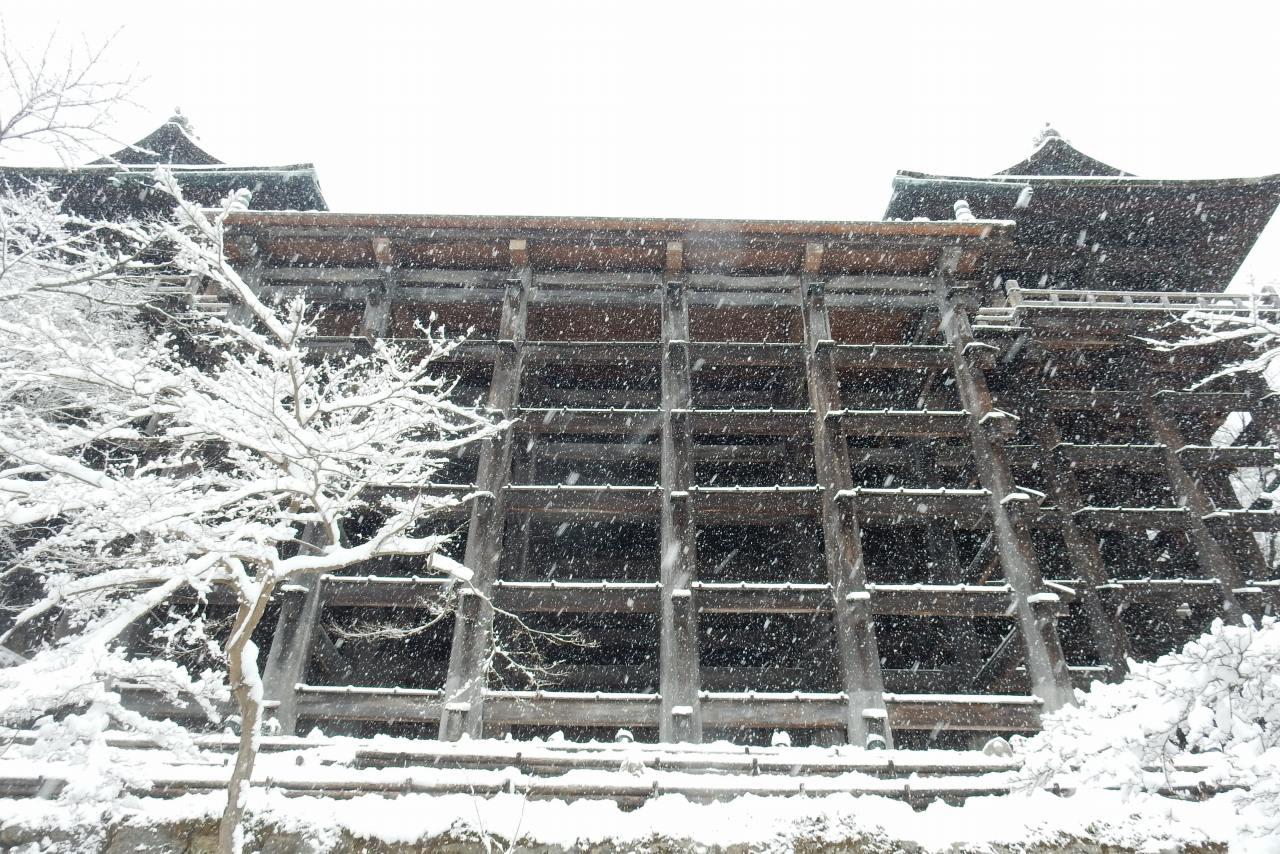 雪京都 335