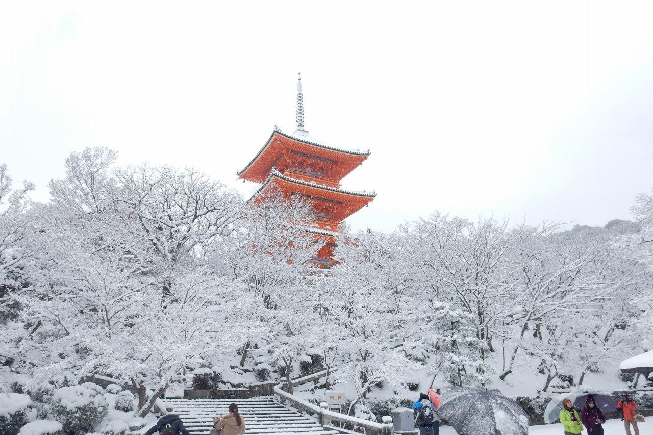 雪京都 349