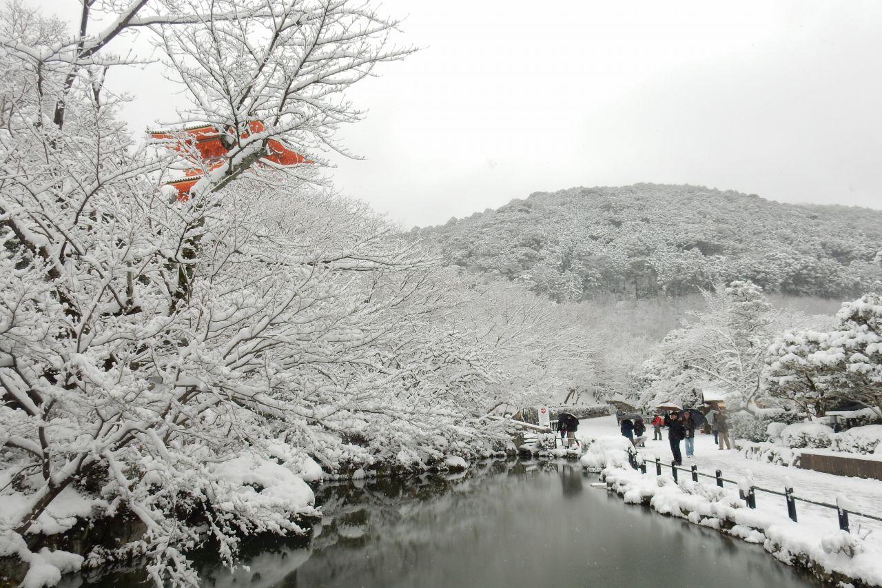 雪京都 354
