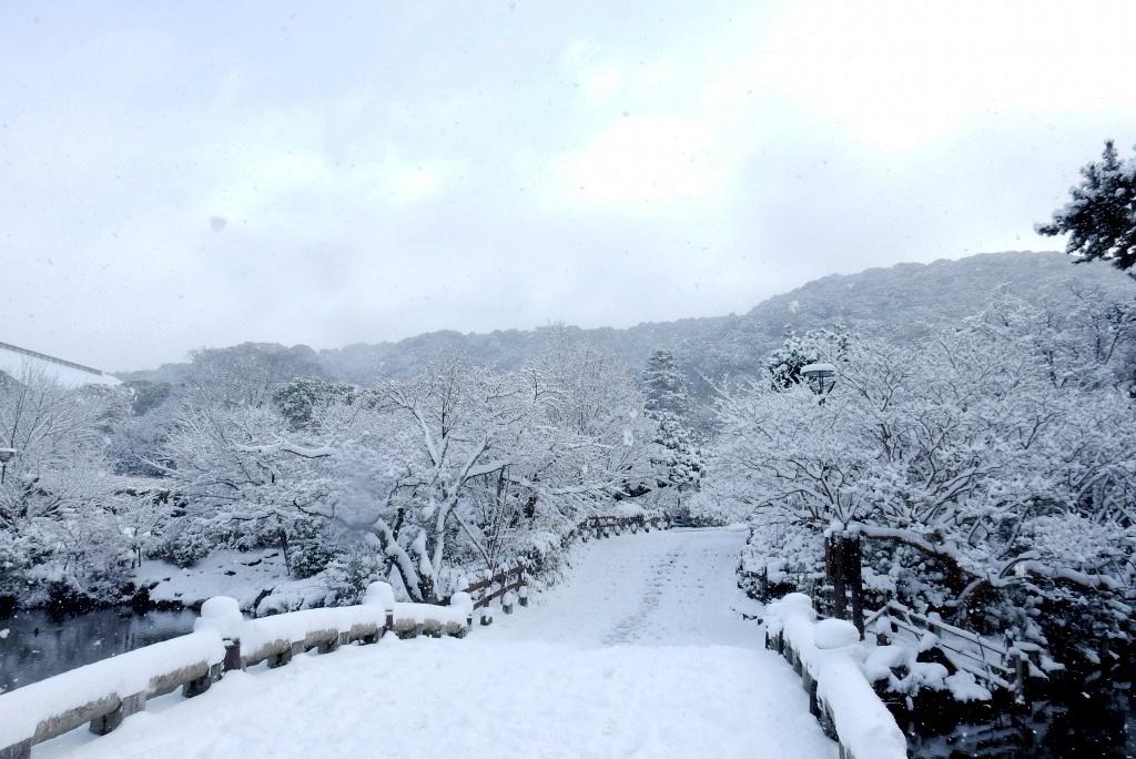 雪京都 388