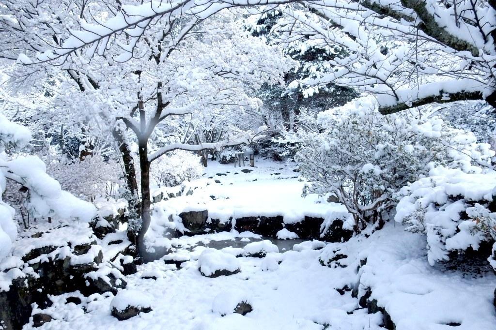 雪京都 402