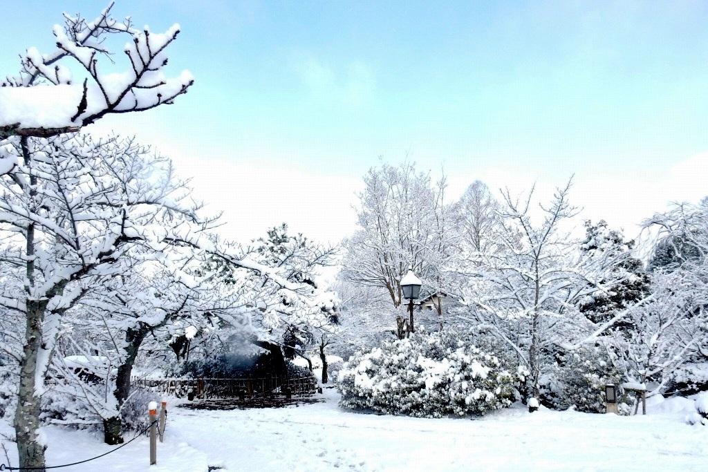 雪京都 404