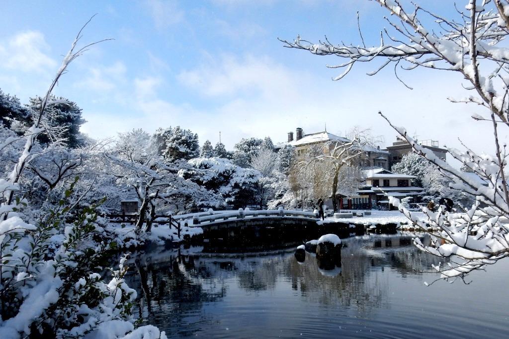 雪京都 409