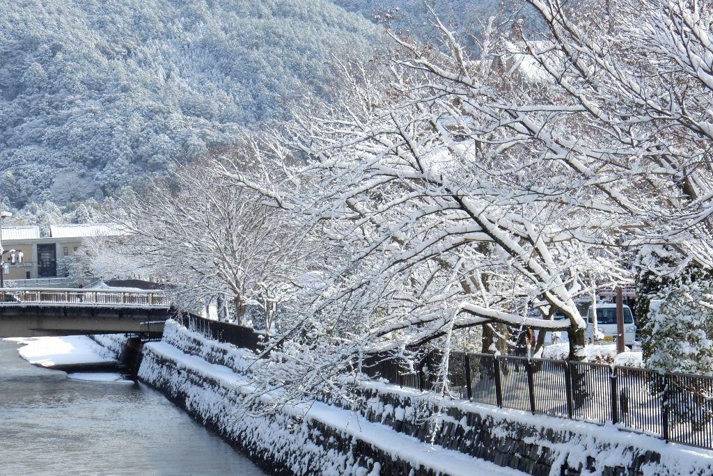 雪京都 429