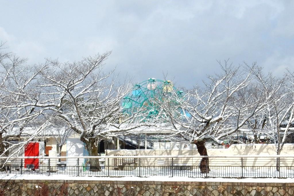 雪京都 444