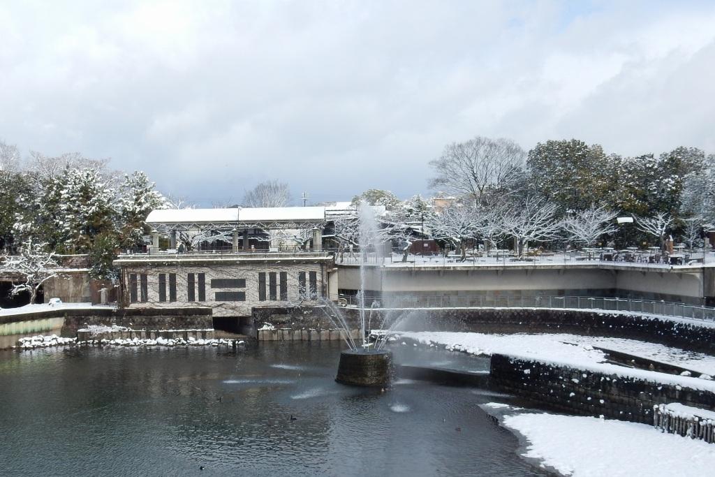 雪京都 449