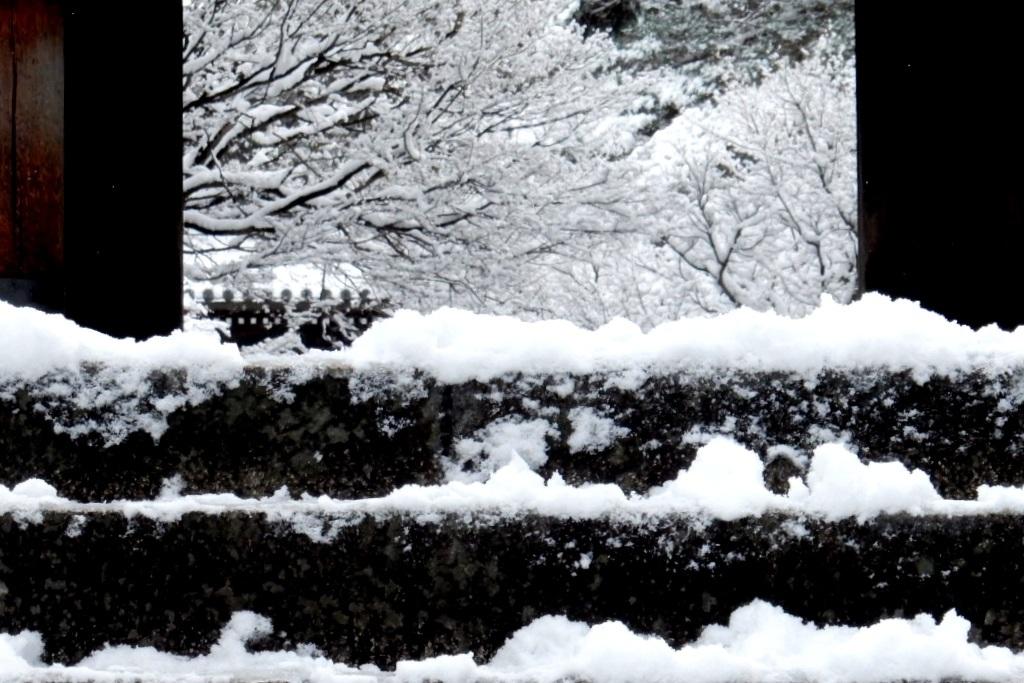 雪京都 461