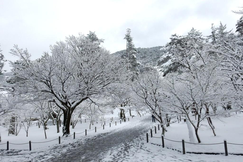 雪京都 469